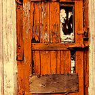 Old Orange Door by Paul Wolf