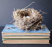 nesting by beverlylefevre