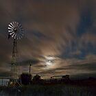 Moonlighting by Pene Stevens
