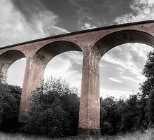 Saltburn Viaduct by Darren Allen