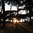 Villa Pamphili, Rome by Sam Gregg