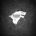 WINTER IS COMING - BLACK by buselikmakami