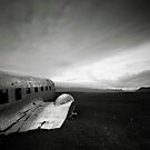Iceland: Plane Wreck II by Nina Papiorek