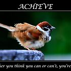 Achieve Motivational Poster by Webitect