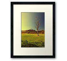 Lucid Dream Framed Print