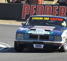 Tough as Nails Touring Car Masters Qld Raceway 2012 by davidstorey