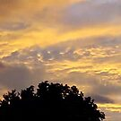 July 2012 Sunset 17 by dge357