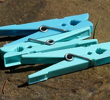 Clothes Peg Clip Blue Laundry Hang Budget by cokohahoqe