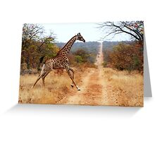Giraffe running across the road Greeting Card