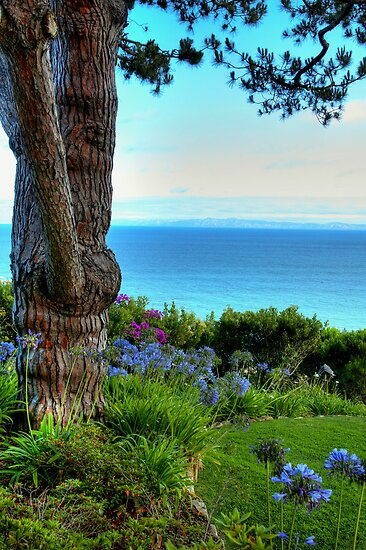 Blue Waters In Palos Verdes California by Diana Graves Photography