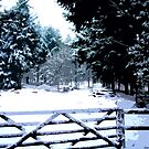Gate in the Snow by Anthony Palmer-Greene