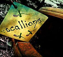 S C A L L I O N S  by Scott Mitchell