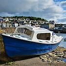 Mousehole Harbour 4 ~ Cornwall by Susie Peek