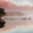 Wyaralong Dam Sunrise by D Byrne