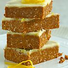 Citrus Slice by Kathy Reid