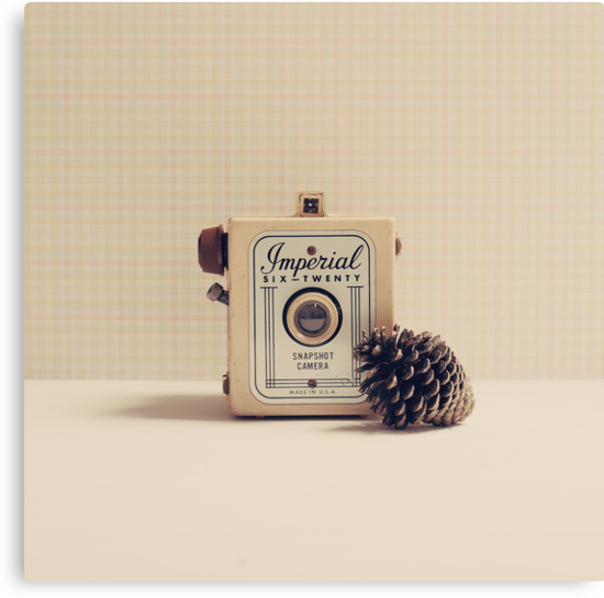 Retro - Vintage Autumn Camera and a Pine Cone on Beige Pattern Background  by Andreka