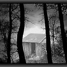 ++The Wood Shed++ by PatChristensen
