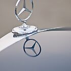 Mercedes Benz by Alice Kent