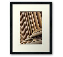 scholastic columns  Framed Print