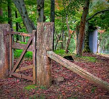 Gate. by vilaro Images