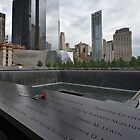 Rose at 911 Memorial Pool by Gary Eason + Flight Artworks