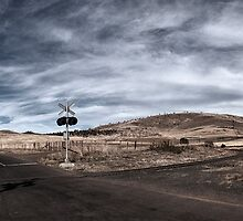 Road To Nowhere Panorama by Andrew Fuller