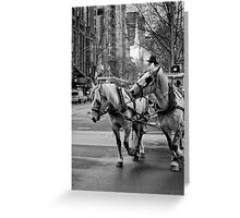 C'mon Fred, pay attention and keep up! The bloke said turn right! Greeting Card