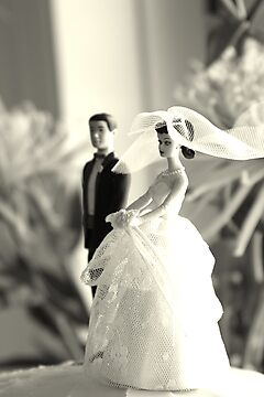 The Groom Stands Humbly in the Background by urmysunshine