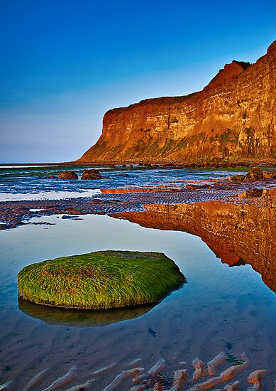 Evening Reflections by Phillip Dove