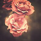 Pink Vintage Roses by Andreka