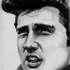 Elvis by John Hinds