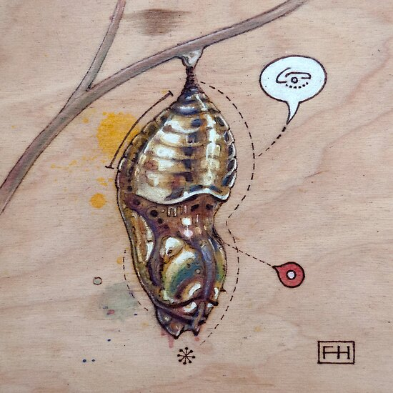 Pupa 04 by Fay Helfer