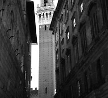 Siena, Italy by ACImaging