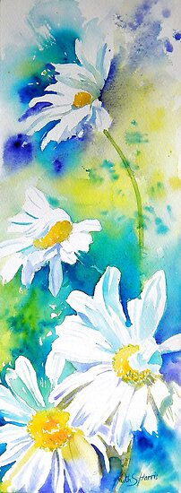 Tall Daisies by Ruth S Harris