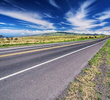 Mountain highway, Hawaii by fearonwoodphoto