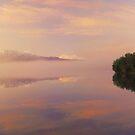 Dawn mist panoramic by Paul Mercer