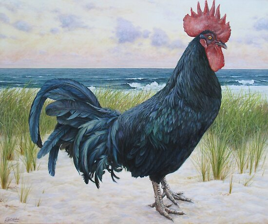 """Off Duty ( Rooster 3)"" by Joe Helms"