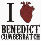 Anatomical Love - Benedict Cumberbatch by tripinmidair