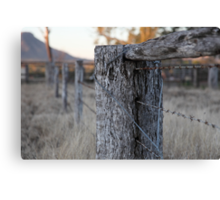 The Fence Post Canvas Print