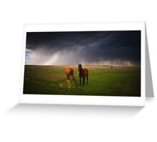 Horses In The Storm Greeting Card