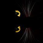 Black Cat - Horizontal by sandnotoil