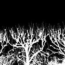 Trees without Leaves by Tamarra
