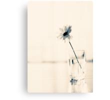 One Flower on Beige Background  Canvas Print