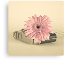 Pink Flower and Camera  Canvas Print