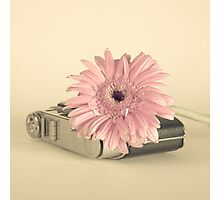 Pink Flower and Camera  Photographic Print