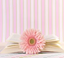 Pink Flower and Open Book  by Andreka