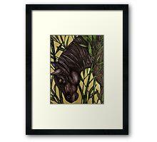 Horse in Bamboo Framed Print