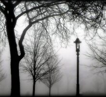 What lurks in the fog... © by Dawn M. Becker