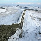 Winter on Hadrians Wall, Winshields Crag by Joan Thirlaway