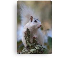 Astronaut Squirrel Canvas Print